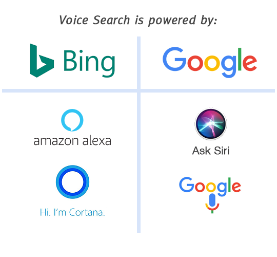 Voice Search is powered by Bing and Google